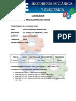POZO DE TIERRA.docx