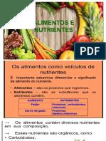 Alimentos e Piramide Alimentar