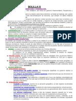 Bolilla Ix-historia Const. Argentina