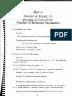 principio del buen orden.pdf
