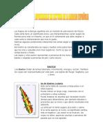 72987454-MANUAL-BASICO-DE-APRENDIZAJE-DE-LECTURA-DE-LA-BARAJA-ESPANOLA.pdf
