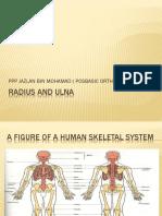 Radius and Ulna Presentation