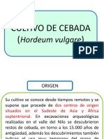 161374424-CEBADA-pdf.pdf