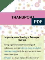 1 Transport