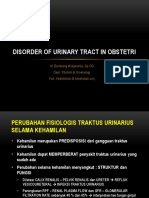 Disorder of Urinary Tract in Obstetri
