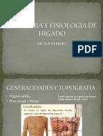 Anatomia y Fisiologia de Higado