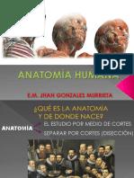01 Anatomía Humana - Introducción