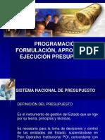 03.01 Programacion Presupuestal