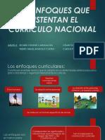 Enfoques Del Curriculo 20181