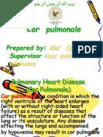 2545Pulmonary Heart Disease (Cor Pulmonale) الاء