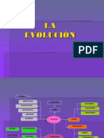 evolución anexo