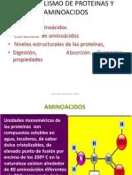 clase-2-proteinas