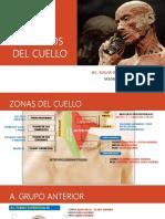 17. MÚSCULOS DEL CUELLO 1.pdf