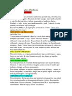 Técnicas de Artes Plásticas.docx