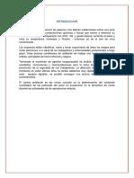 286501242-Monitoreo-de-Agentes-Fisicos-y-Quimicos-en-Mina.docx