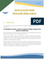 Guia Para Realización de Mini Junta Oct 17