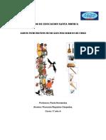 Instrumentosmusicalesdechile 150802140821 Lva1 App6891