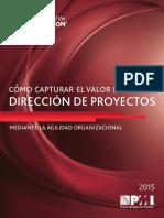 2015 Como Capturar El Valor de La Direccion de Proyectos Agilidad Organizacional