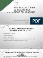 Evaluación de Aspectos Semánticos.