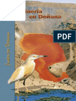 Mineria en Doñana 2001