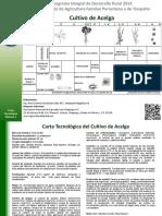 ACELGA.pdf