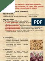 Forraje y Clasificacion 15
