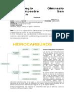 Sisntesis II Periodo Hidrocarburo y Reacciones de Los Hidrocarburos