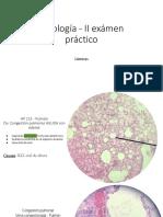Copia de Patología - II Examen (1) (1)