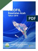 01_Aceh_2016.pdf