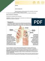 oxigenacion.pdf