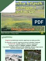 07_Dinamika_biljnih_zajednica-singeneza.pdf1916552565.pdf