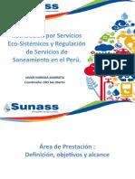 SUNASS - PONENCIA