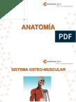 Anatomia_ Sistema Osteomuscular (1)