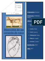 Tp Sistema Circulatorio Biologia 2018