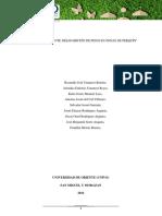 Proyecto Ambiental de perquin..docx