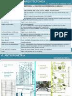 Parametros y Antropometria