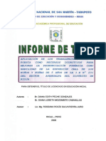 tesis oral.pdf
