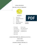 Praktikum Hidrolika H.10_Fatricia Ariane UPI YAI Kelompok 4