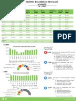 Boletin-Estadistico-Mensual-Minero-10-2017.pdf