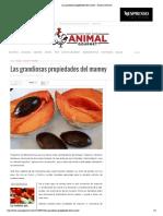 Las Grandiosas Propiedades Del Mamey – Animal Gourmet