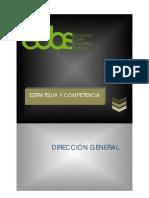 Dirección General.pdf