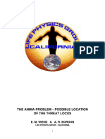 The Anima Problem -- Public version.pdf