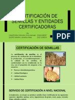 Certificación de Semillas EXPO