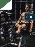 12week Shred - Exercise Glossary