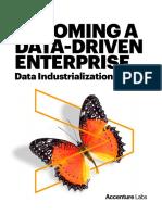 Data Maturity Model POV