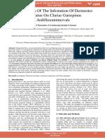 Investigation of the Infestation of Dermestes Maculatus on Clarias Gariepinus Atdifferentintervals