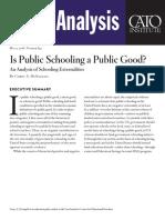 Is Public Schooling a Public Good? An Analysis of Schooling Externalities