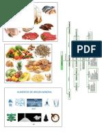 Alimentos de Origen Animal Vegetal Mineral Gobierno Escolar