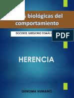Bases Biologicas Del Comportamiento
