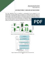 DESCRIPCIÓN DE LOS REACTORES.docx